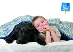 Labrador best dog breeds for children