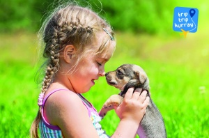 puppy arrives to family with kids
